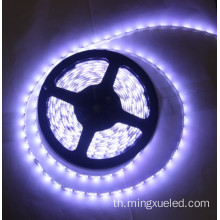 กันน้ำ SMD3528 LED Strip Light Christmas Decoration
